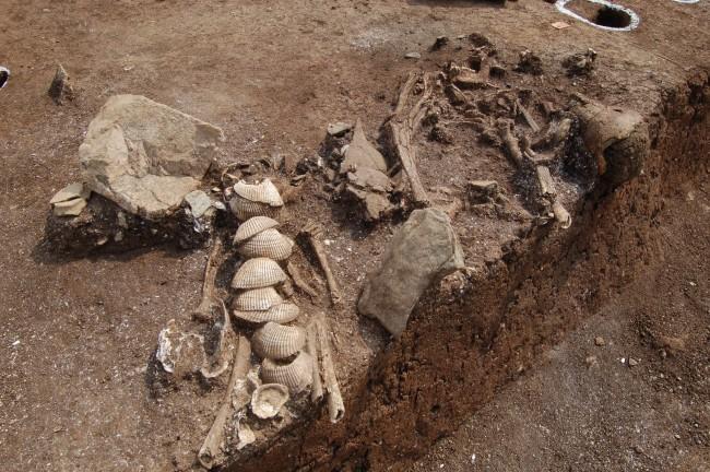 국립문화재연구소팀이 부산 가덕도 장항 유적에서 나온 신석기시대 사람뼈를 분석한 결과 질소 안정동위원소 값이 높게 나왔다. 이는 당시 사람들이 해양성 포유류와 어패류를 주식으로 삼았다는 증거이다. - 한국문물연구원 제공